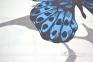 Постельное бельё сатин ТМ TAC Butterfly Blue евро-размер 4