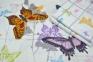 Постельное бельё сатин ТМ TAC Butterfly Blue евро-размер 3
