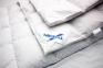 Одеяло зимнее ТМ Billerbeck Лилея К2 4
