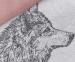 Набор полотенец кухонных 2 шт ТМ Hobby Wolf 50х70 0
