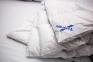 Одеяло зимнее ТМ Billerbeck Лилея К2 5
