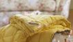 Одеяло демисезонное ТМ Markus Шерсть мериноса 0