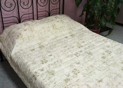 Одеяло-покрывало ТМ Leleka-Textile микрофибра M12