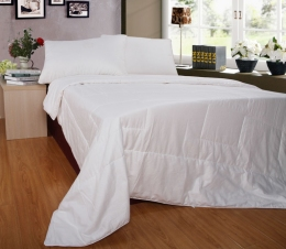 Одеяло шелк ТМ Word of Dream
