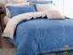 Постельное белье ТМ Вилюта сатин-люкс Tiare 63 евро-размер